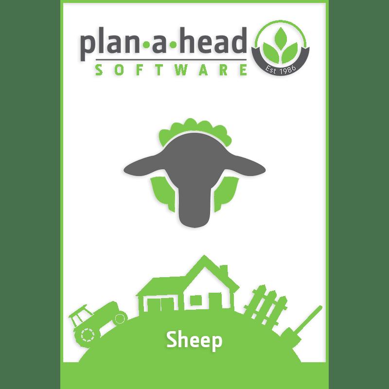 Plan-A-Head Sheep Software